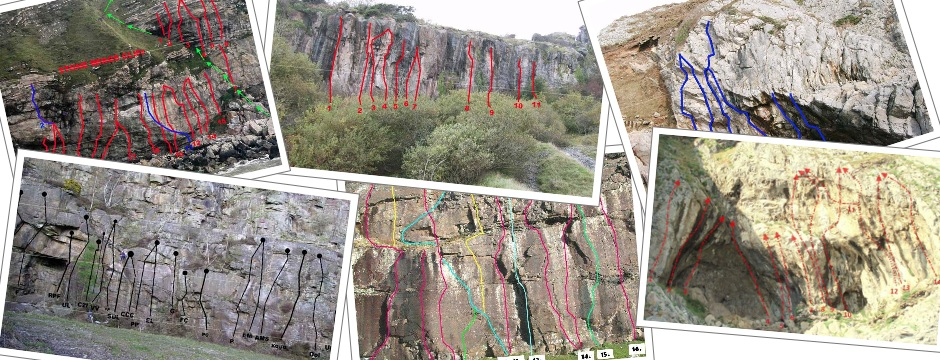 Free topos for selected crags